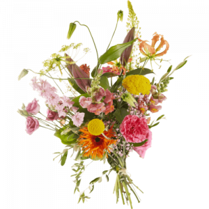 Cheerful field bouquet