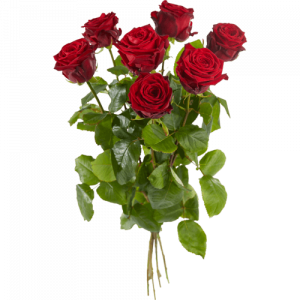 Red roses per piece