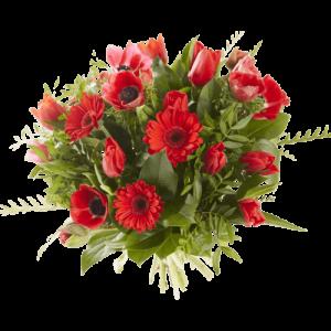 Valentijnsboeket rode bloemen