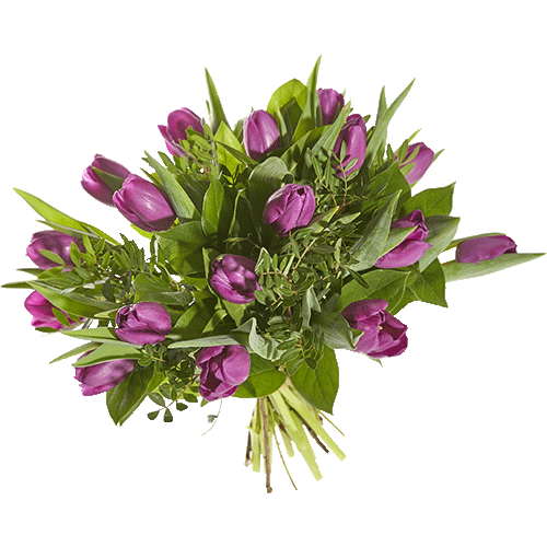 Bouquet with Fuchsia tulips