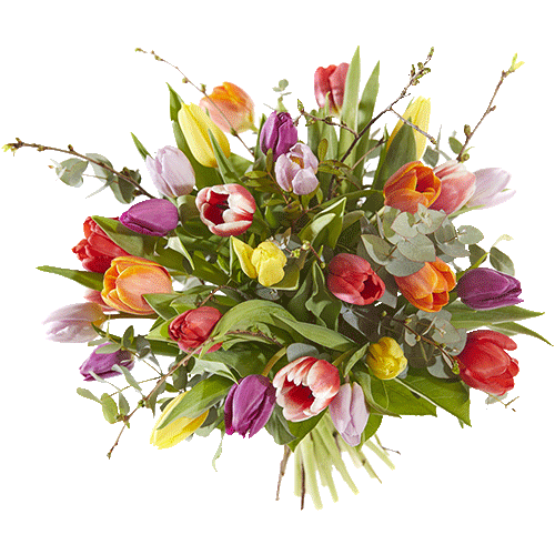 Colourful bouquet with tulips