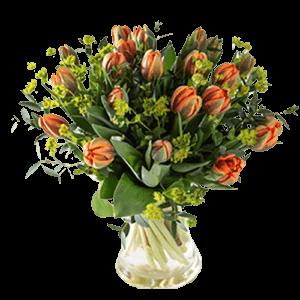 Tulpenboeket Koninklijke tulp