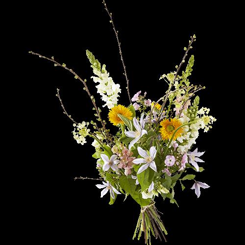 Boeket Spring in het veld met bloemen in lichte kleuren