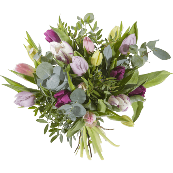 Bouquet of tulips in soft colours