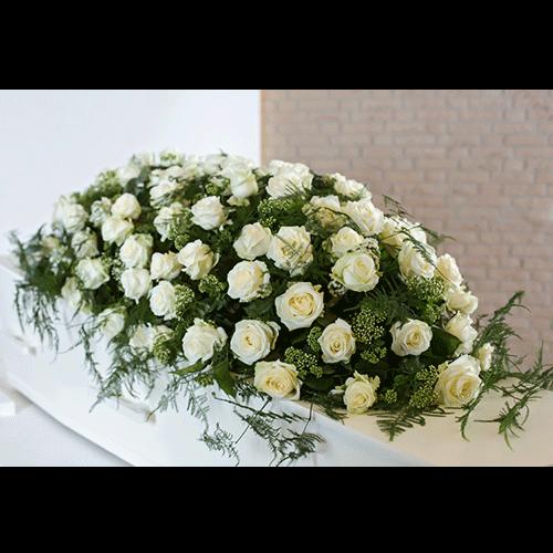 Kistbedekking van witte rozen