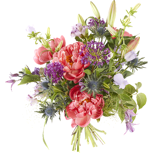 Bouquet with peonies, campanula and clematis.