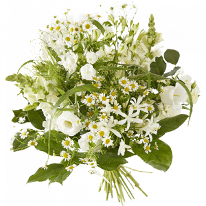 Spring bouquet with beautiful white flowers