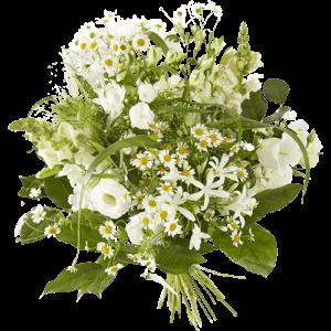 Voorjaarsboeket met prachtige witte bloemen