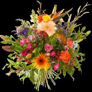 Vriendschapsboeket van verschillende felgekleurde bloemen