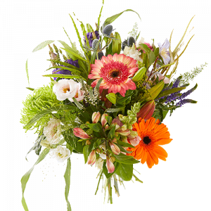 Picked bouquet with several cheerful flowers