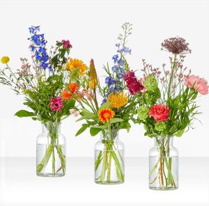 A beautiful seasonal bouquet with the most beautiful seasonal flowers